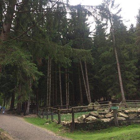 Feld am See, Austria: photo9.jpg