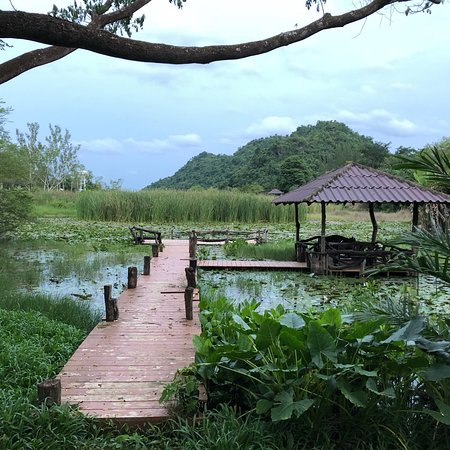 Beautiful, peaceful and friendly lodge