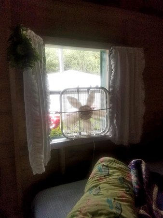 Pemaquid, Мэн: country windows and curtains