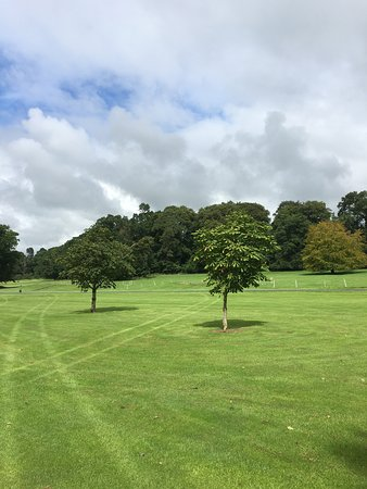 County Wicklow Foto
