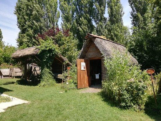 Villanova, Italia: Nel regno delle erbe palustri