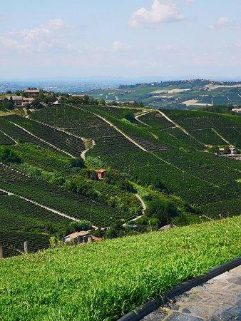 Castiglione Tinella, إيطاليا: IMG_20180815_152951_large.jpg
