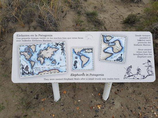 Punta Delgada, Argentina: 20180817_120109_large.jpg