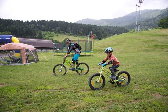 Niseko Mountain Bike School & Guiding