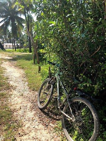 Bike Zanzibar: the bike