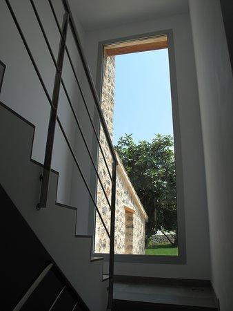 Muro Photo