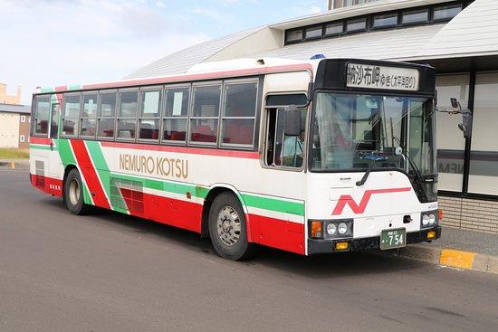Nemuro Kotsu
