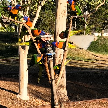 Pine Creek, Австралия: photo1.jpg