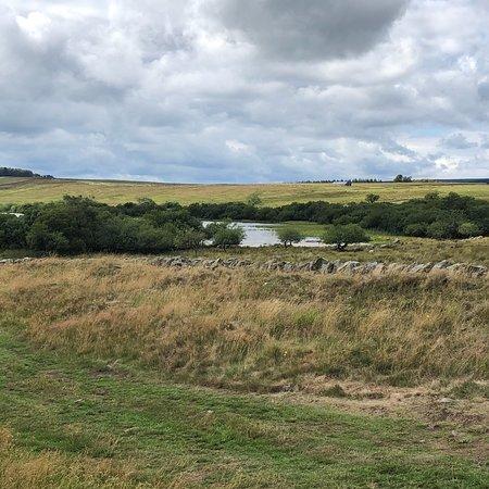 Национальный парк Нортумберленд, UK: photo3.jpg