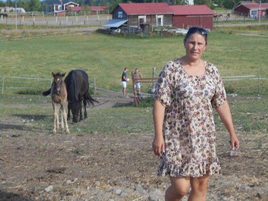 Promenad i hästhagen... Ava   Delsbo