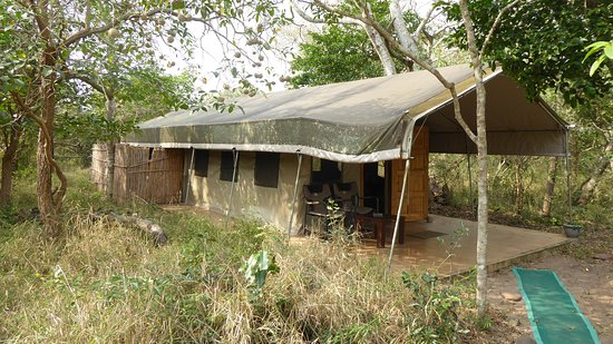 Tembe Elephant Park, South Africa: Chalet/tented rooms
