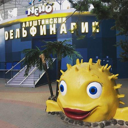 Alushta Dolphinarium Nemo