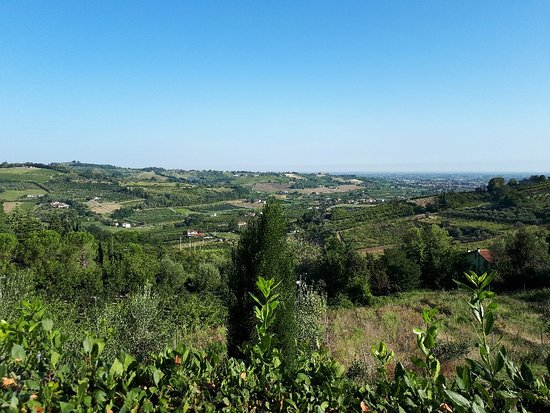 Montiano, Itálie: 20180818_084813_large.jpg