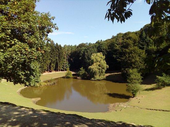 Rosengarten, Tyskland: Lago de los ciervos