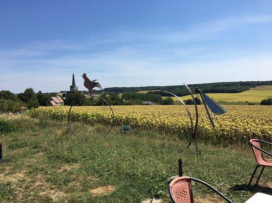 Crissay-sur-Manse, Francja: Vue de la terasse