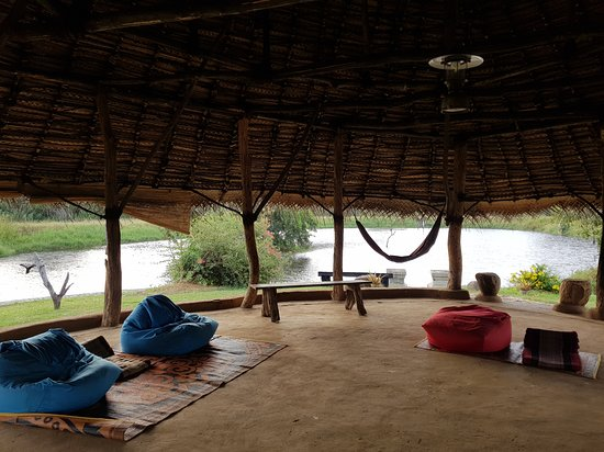 Anamaduwa, Sri Lanka: The yoga hut