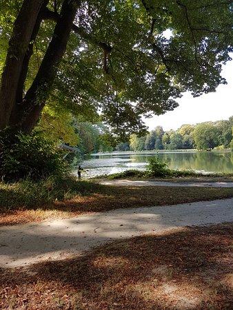 Parc Rousseau : 20180818_111205_large.jpg
