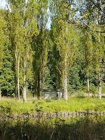 Parc Rousseau : 20180818_112123_large.jpg