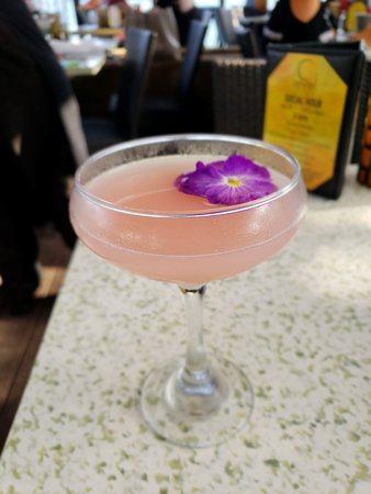 C-Level Lounge: Coral bloom cosmo