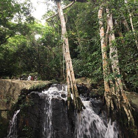 Yanuo Tropical Rain Forest Resort: photo1.jpg