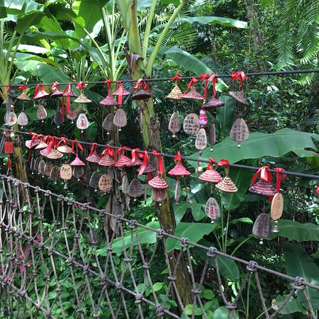 Yanuo Tropical Rain Forest Resort: photo2.jpg