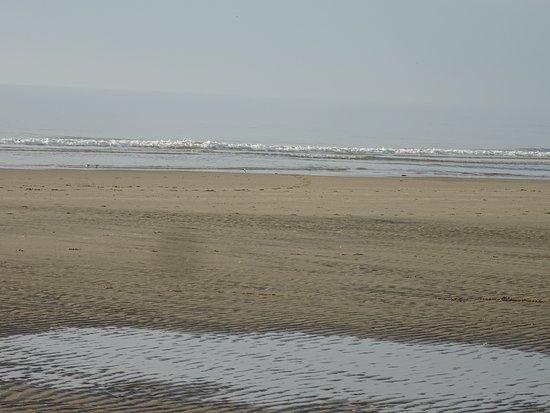 Ijmuiden Strand De Stranden Van Ijmuiden Aan Zee Picture Of