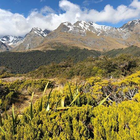 Milford, Yeni Zelanda: photo0.jpg