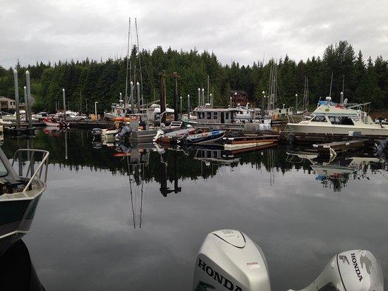 Knudson Cove Marina: Boats available for rent and charter at the marina.