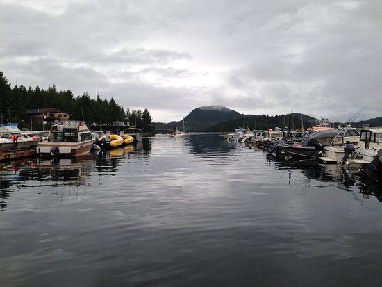 Knudson Cove Marina: View looking out as we prepared to leave.