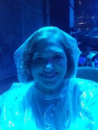 Blue Man Group: Poncho Seat Area