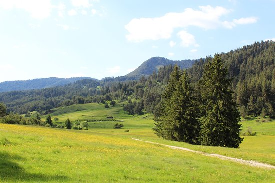 Província de Blagoevgrad, Bulgária: Rhodope Mountains   Bulgaria