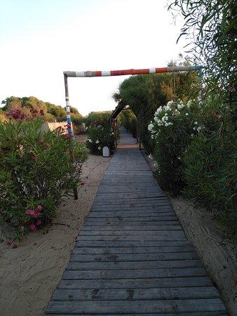 Carthage Thalasso : Chemin pour aller à la plage, 300m