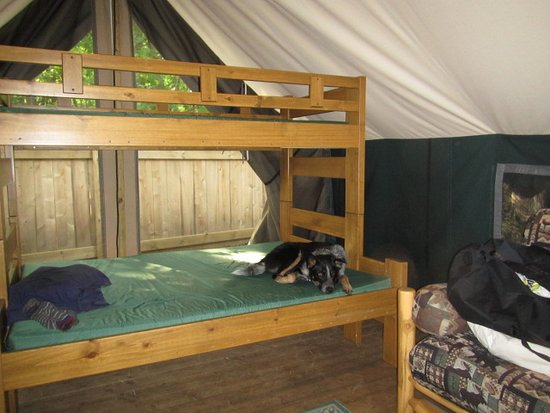 Christmas, MI: Glamping at Uncle Ducky's