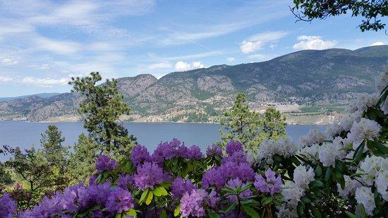 Linden Gardens: view of Skaha Lake