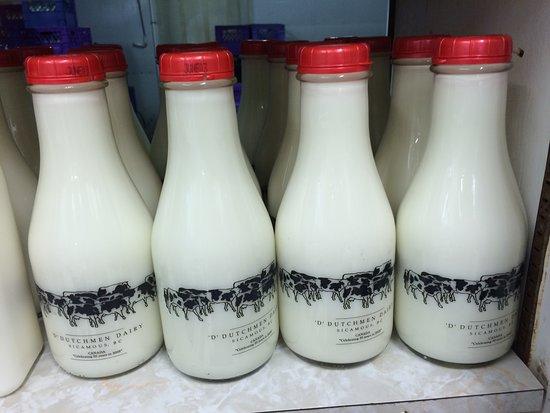 D Dutchmen Dairy: Milk bottles