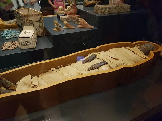 Vatican Museums: 20180810_194712_large.jpg