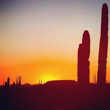 Catavina, Μεξικό: photo3.jpg