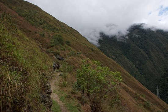 Inca Trail: A long section of the 1 day trail is along the mountainside