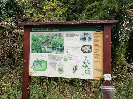Dimmingsdale Nature Reserve: Information Board