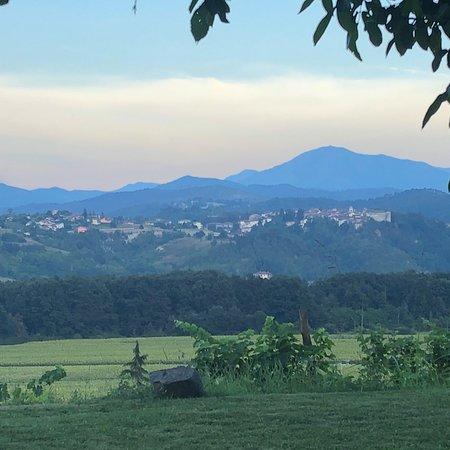 Tagliolo Monferrato, Italia: photo7.jpg