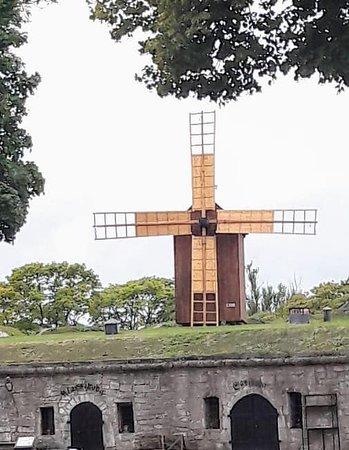 Saaremaa, Estonia: One of 800 windmills that existed on this island.