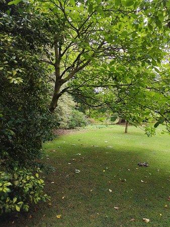 Broseley, UK: IMG_20180818_141006_large.jpg