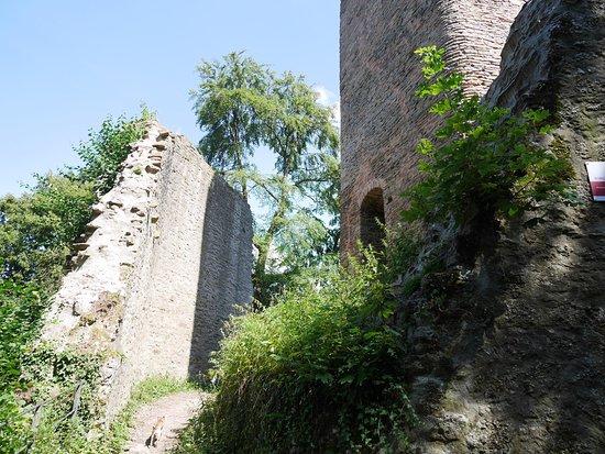 Burg Alt Wolfstein
