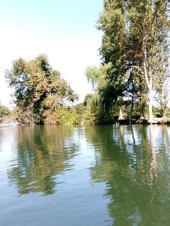 Cloyes-sur-le-Loir, Francja: IMG_20180818_151751_large.jpg