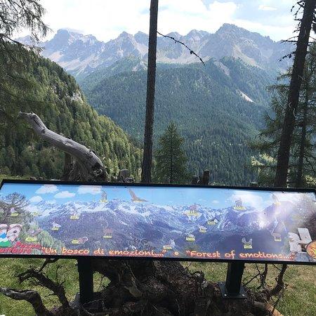 Pozza di Fassa, Itálie: Ski Area Ciampac-Buffaure