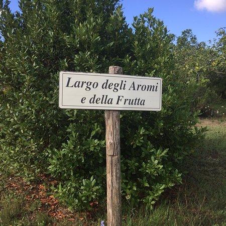 Brattiro, Itália: photo7.jpg
