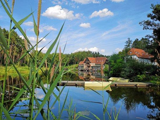 Olesnica, Polandia: Gosciniec pod Zajacem