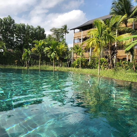 The Ubud Village Resort & Spa: photo5.jpg