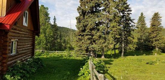 Black Diamond, แคนาดา: Grounds around the cabins