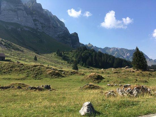 Alpschaukaeserei Schwaegalp